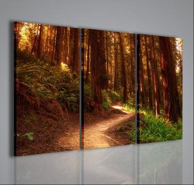 Quadri Moderni-Quadri Natura e Paesaggi-Path in the woods