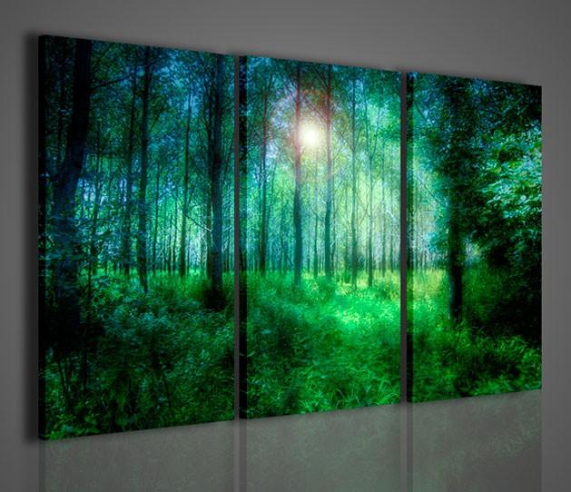 Quadri moderni quadri natura e paesaggi greenwood for Stampe da parete