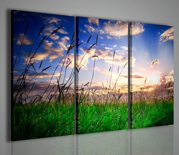 Quadri moderni quadri natura e paesaggi tramonto su prato for Stampe da parete