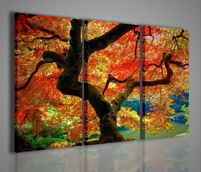 quadri moderni quadri fiori e piante maple webbet