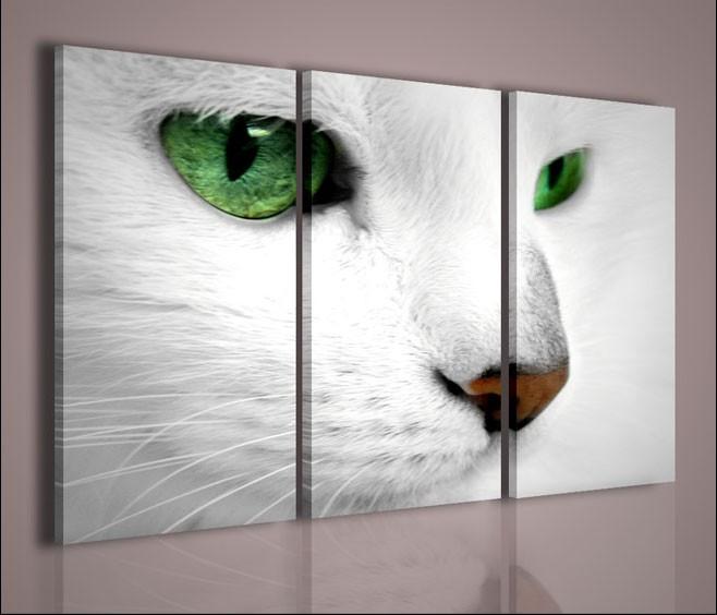 Quadri moderni quadri animali cats artcanvas2011 for Quadri da arredamento moderno