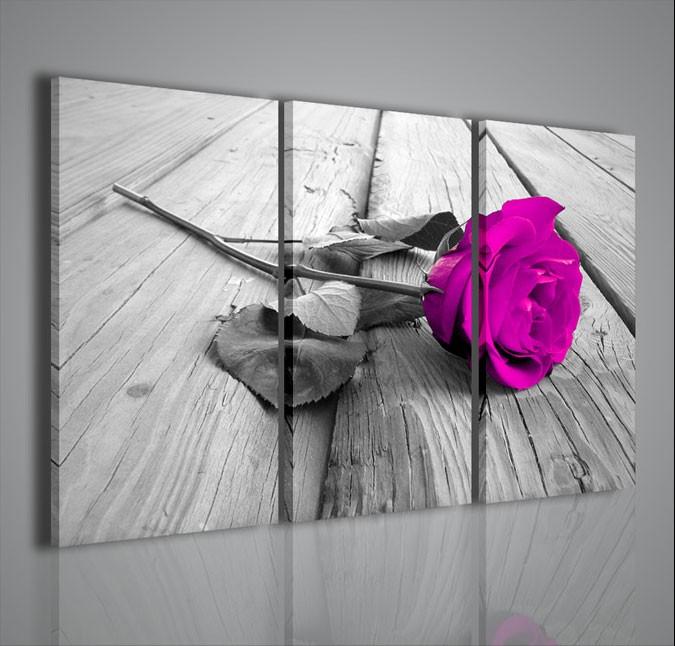Quadri Moderni-Quadri Fiori e Piante-Violet Rose | artcanvas2011