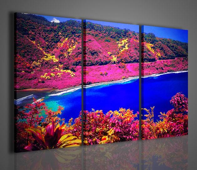 Quadri moderni quadri natura e paesaggi hawai surreal for Stampe moderne per soggiorno