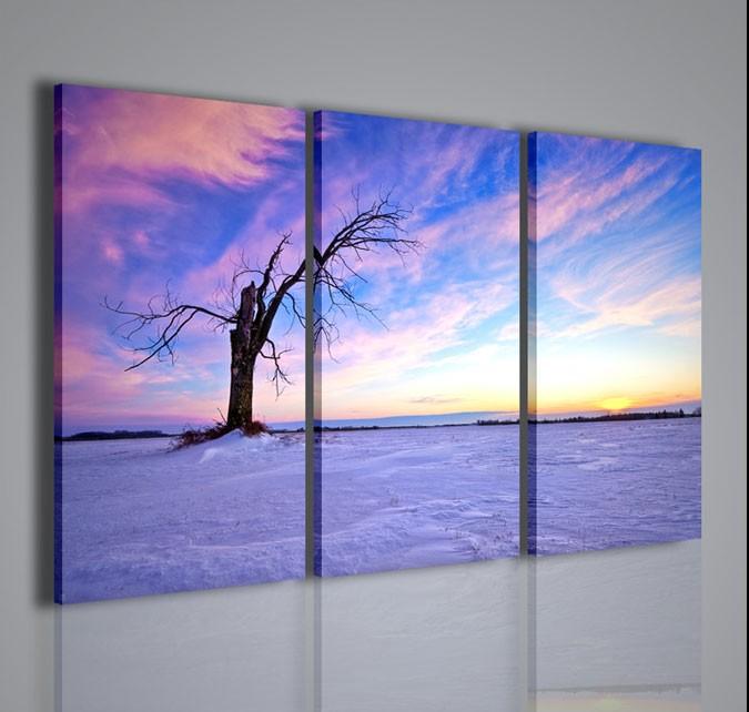 Quadri moderni quadri natura e paesaggi desert white for Ebay quadri