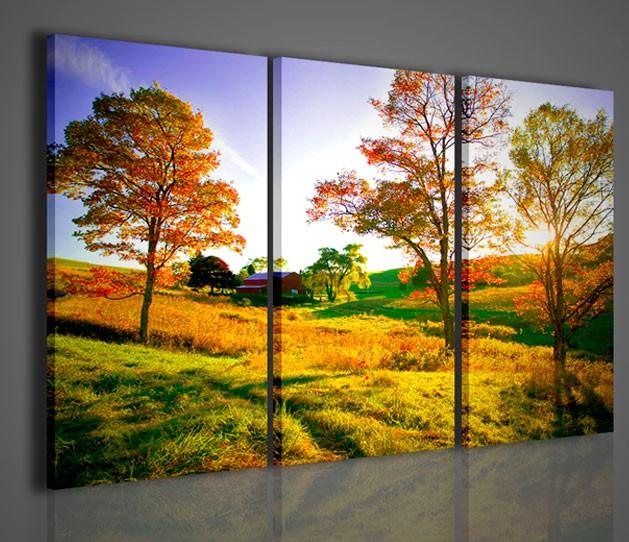 Quadri moderni quadri natura e paesaggi golden rayes for Stampe quadri astratti