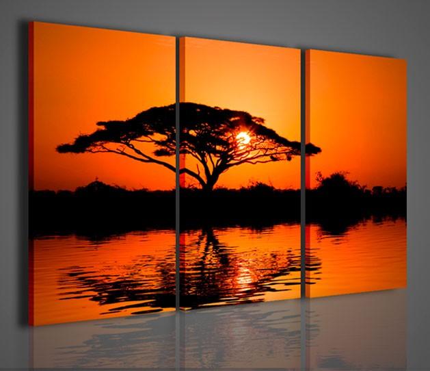 Quadri moderni quadri natura e paesaggi beuatiful african for Quadri da arredamento moderno