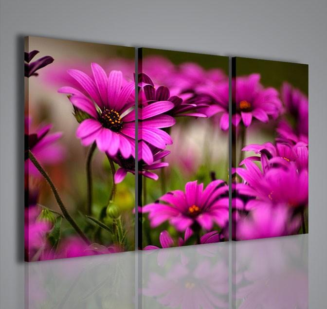 Quadri moderni quadri fiori e piante violet flower ii for Quadri fiori