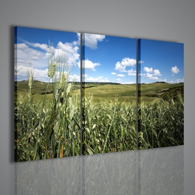 Quadri moderni toscana tuscany landscape 120x90 for Stampe arredamento moderno