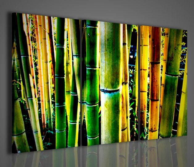 Quadri Moderni-Quadri Etnici-Bambù Detail | artcanvas2011