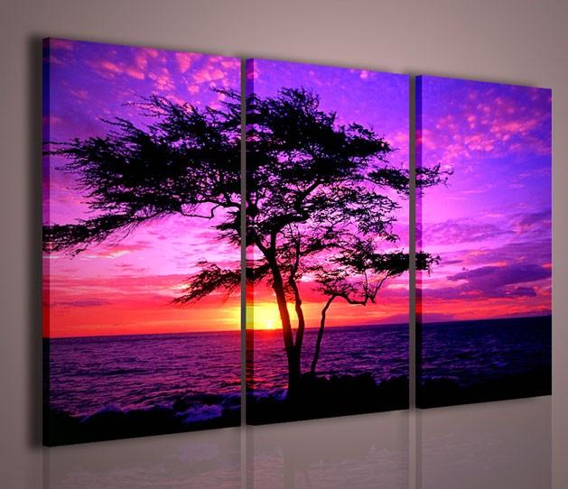 Quadri moderni quadri natura e paesaggi kiawe tree hawai for Quadri moderni per arredamento soggiorno