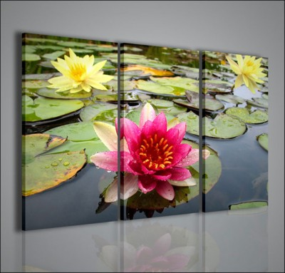Quadri Moderni-Quadri Fiori e Piante-Flower Water | artcanvas2011