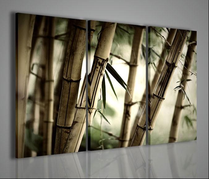 Quadri Moderni-Quadri Etnici-Oriental Bambù | artcanvas2011